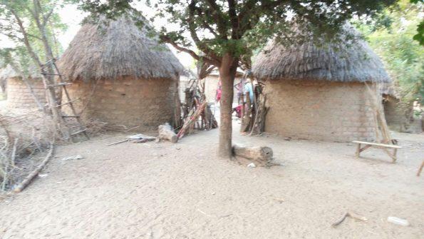 cases traditionnelles massa ( concession)
