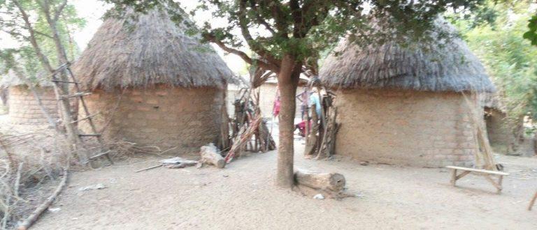 Article : Croyances et traditions du peuple Massa